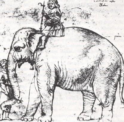 hanno-the-pope-s-leo-x-elephant-1516