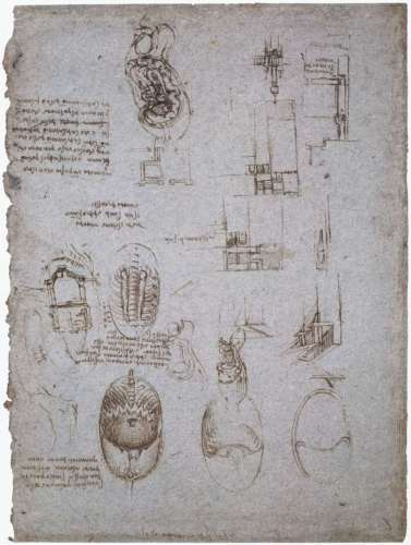studies-of-the-villa-melzi-and-anatomical-study