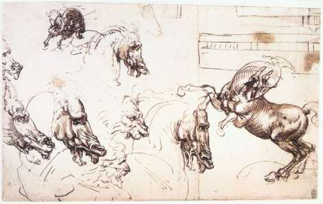 study-of-horses-for-the-battle-of-anghiari