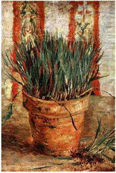 Flowerpot-with-Chives