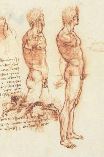 the-anatomy-of-a-male-nude-and-a-battle-scene